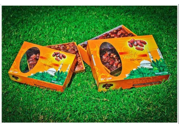 Dates Carton Boxes 2Kg