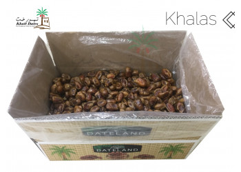 KHALAS DATES ( Available Packaging 5 KG and 10 KG )