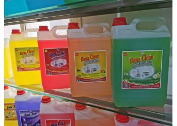 Banaclean Dish Wash Liquid ( 5LTR X 4 )