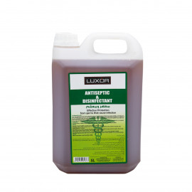 Antiseptic & Disinfectant (5L x 4 Pieces)
