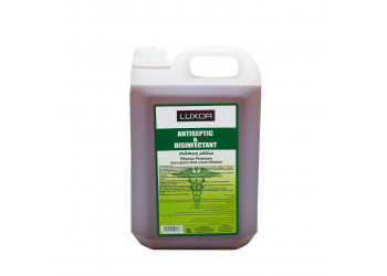 Antiseptic & Disinfectant (5L x 4pcs)