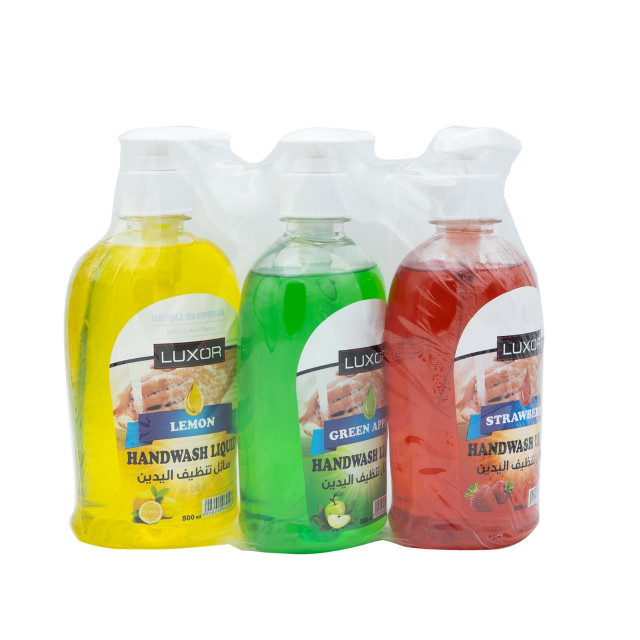 Handwash Liquid (500ml x 24pcs)