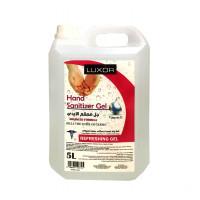 Hand Sanitizer (5L x 4pcs)