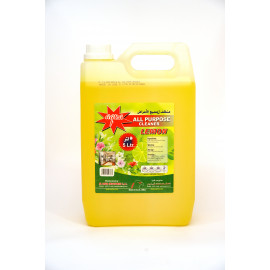 AQUA ALL PURPOSE CLEANER LEMON 5 LTR X 4 pcs per box
