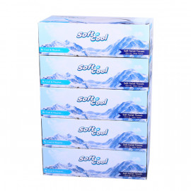 Soft n Cool Facial Tissue, 150 Pulls*2 ply - 5 Box ( 6 Packs Per Carton )