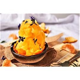 Mandarine Gourmet Sorbet 4.75 Liter per Carton