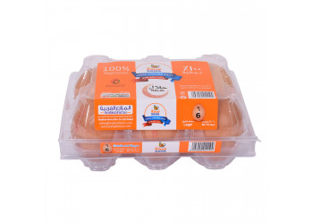 SAHA EGGS BROWN LARGE 6s ( 60 Tray Per Carton )