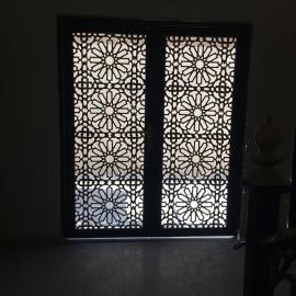 Design Laser Doors